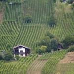 Dolní Rakousko – už jste tam byli na kole?